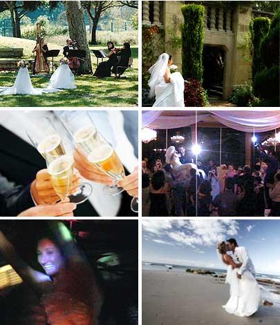 Wedding DJ/MC | Live Wedding Ceremony Music | Elegant Music