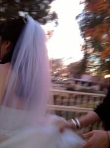 Bridal Procession 2
