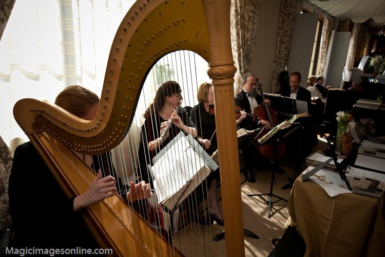Elegant Music Quintet - Harp, Violin, Cello, Flute and Keyboard
