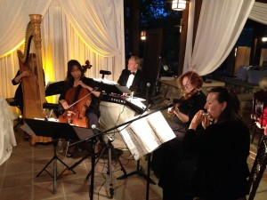Elegant Music Quintet: Flute, Violin, Cello, Piano and Harp