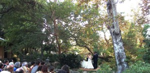 Wedding Ceremony @ Japanese Garden Pasadena, CA