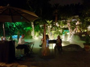 Trio: Violin, Harp and Keyboard. Backyard party in San Marino, CA